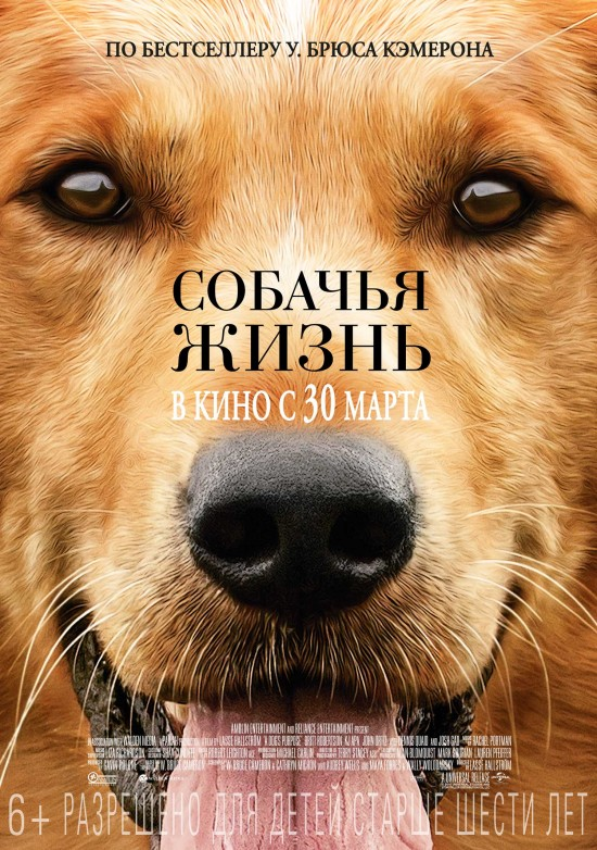filmz.ru_f_233160